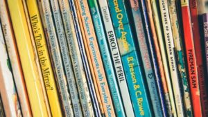 Fiction Books for 2nd Graders Bookshelf